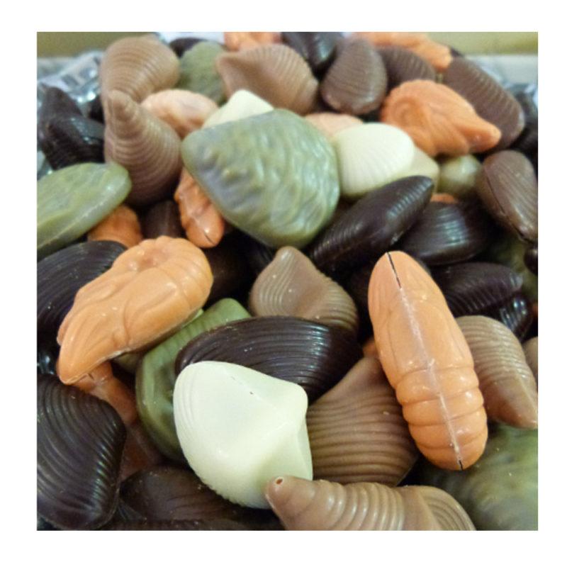 Fruit de mer chocolat