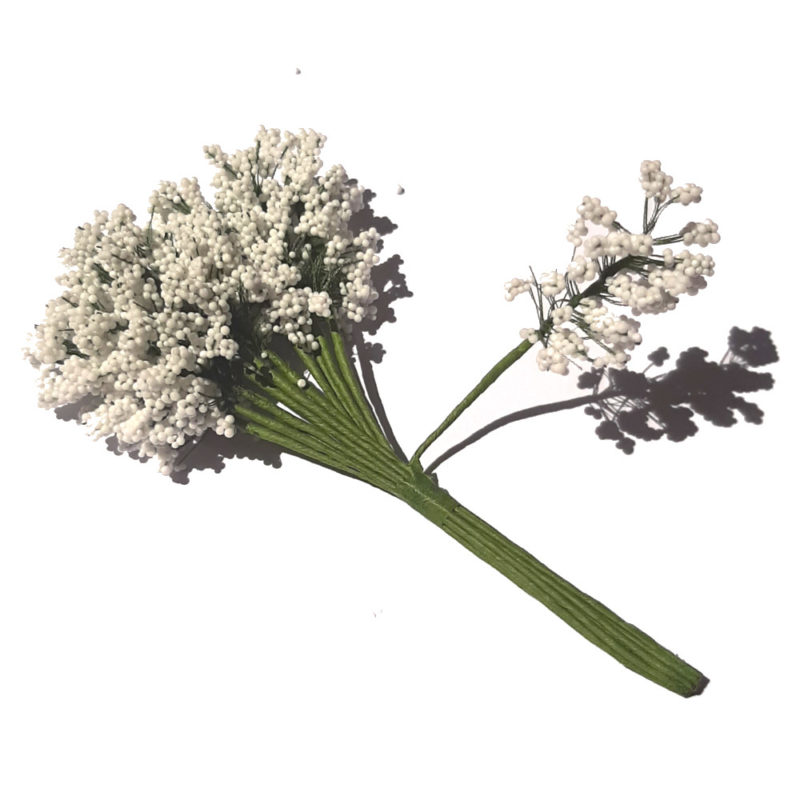 gypsophile blanche